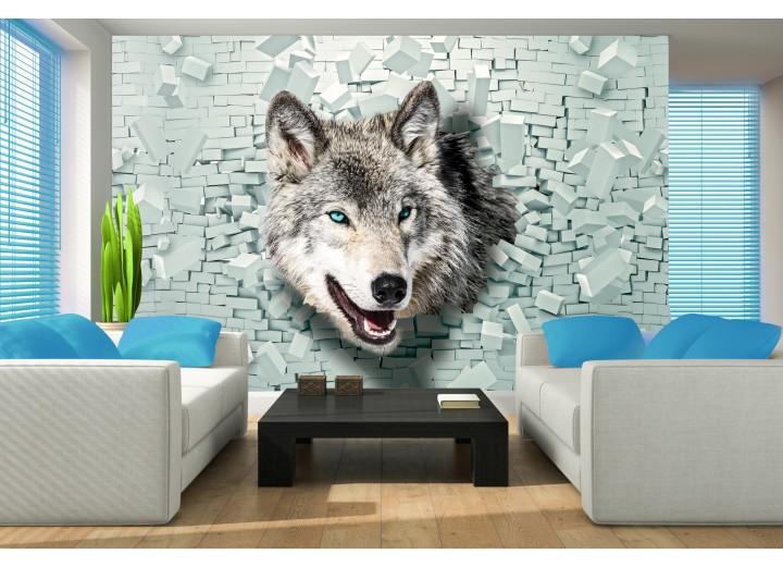 Fotobehang Wolf, Muur | Grijs, Groen | 312x219cm