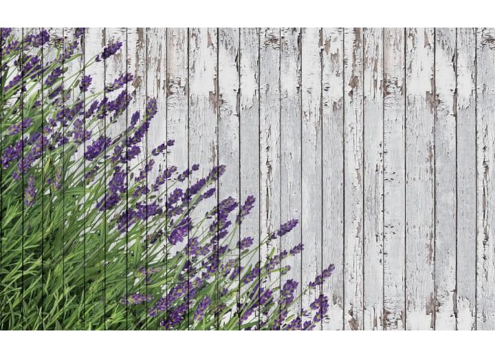 Fotobehang Papier Hout, Lavendel | Grijs | 368x254cm