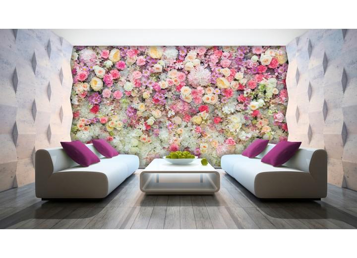 Fotobehang Bloemen | Roze, Crème | 152,5x104cm