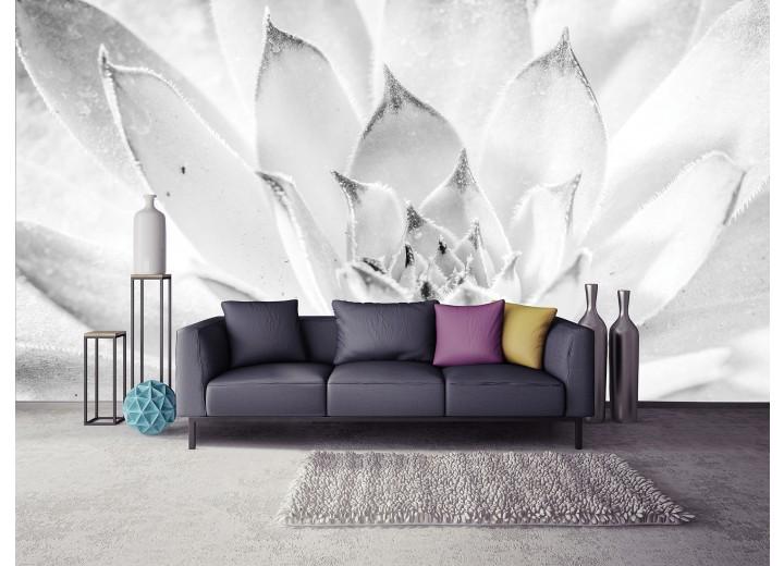 Fotobehang Papier Bloem, Modern | Wit | 254x184cm