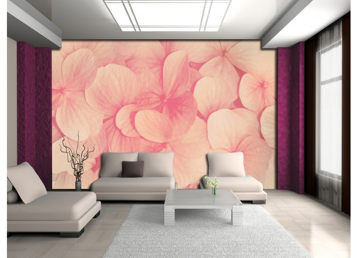 Fotobehang Bloemen | Roze, Crème | 208x146cm