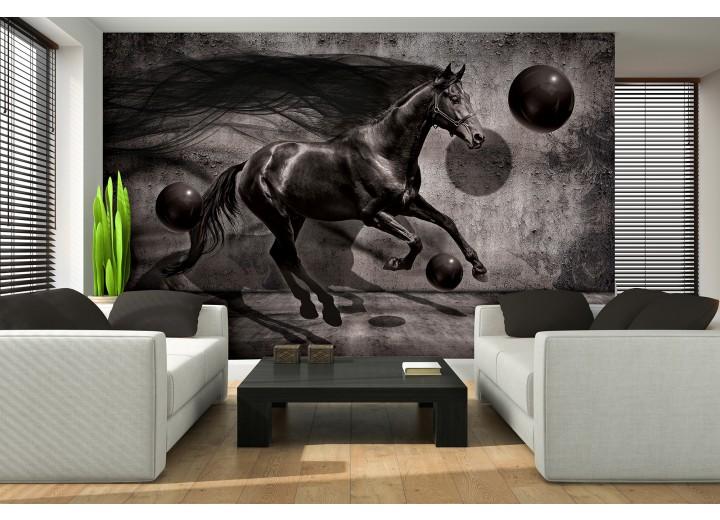 Fotobehang Paard, Design | Zwart | 312x219cm