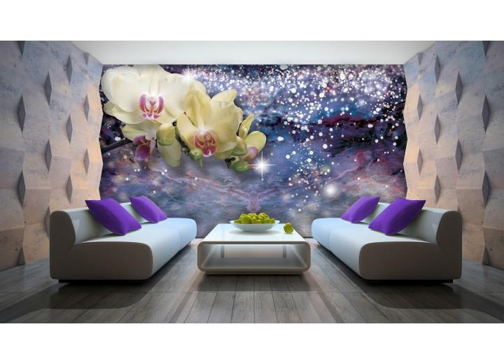 Fotobehang Papier Orchideeën, Modern | Blauw | 368x254cm