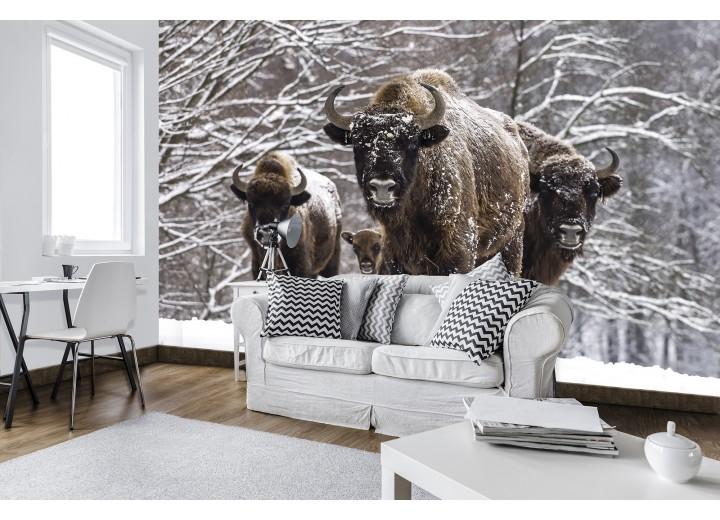 Fotobehang Vlies | Winter, Dieren | Bruin | 368x254cm (bxh)