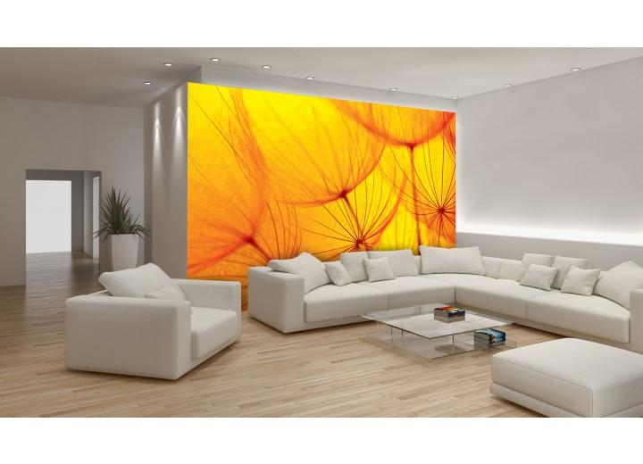 Fotobehang Vlies | Abstract | Geel, Oranje | 368x254cm (bxh)