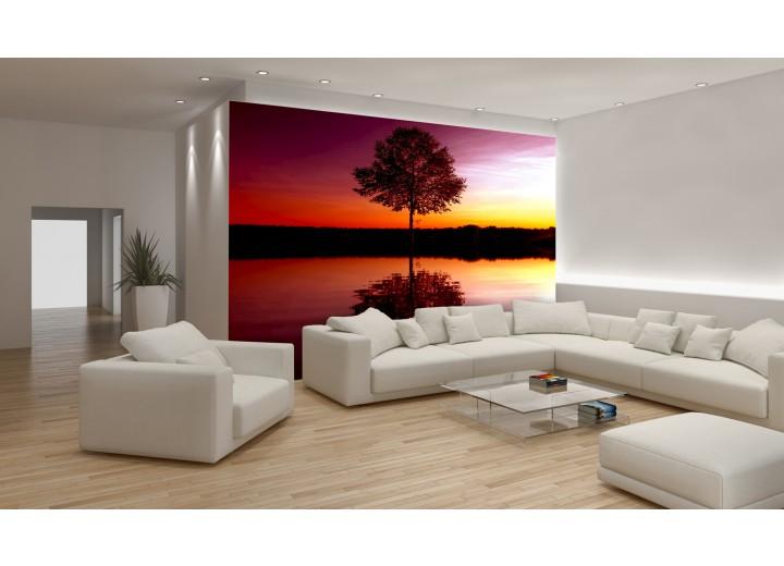 Fotobehang Natuur | Oranje | 104x70,5cm