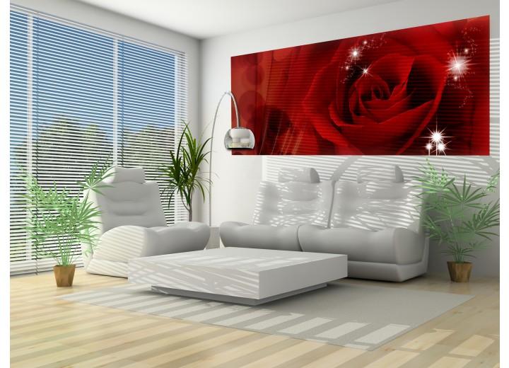 Fotobehang Bloemen   Rood   250x104cm