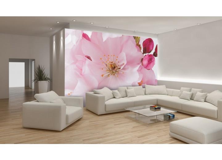 Fotobehang Bloemen | Roze | 104x70,5cm
