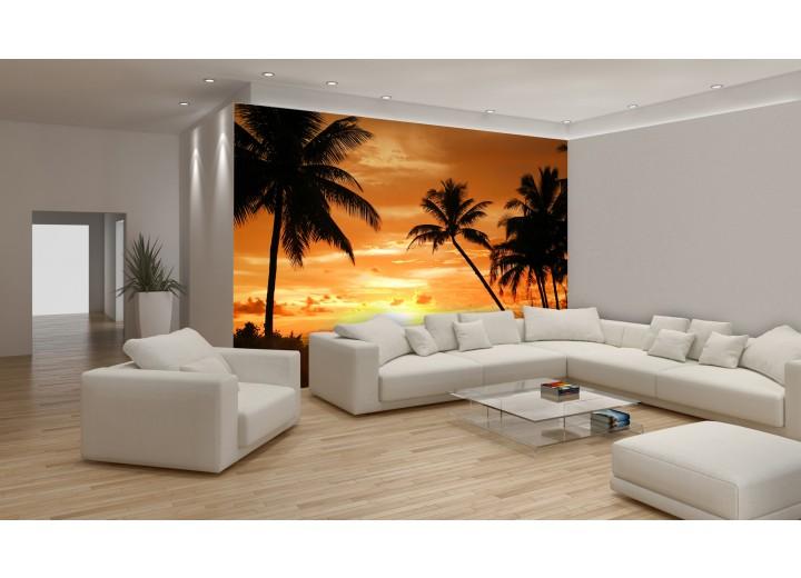 Fotobehang Vlies | Tropisch | Oranje, Zwart | 368x254cm (bxh)