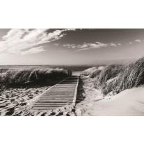 Fotobehang Papier Strand | Grijs, Zwart | 254x184cm