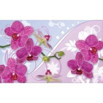 Fotobehang Papier Orchideeën, Bloemen | Roze | 254x184cm