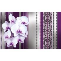 Fotobehang Papier Bloemen, Orchidee | Paars, Grijs | 368x254cm