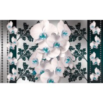 Fotobehang Papier Bloemen, Orchideeën | Turquoise, Wit | 254x184cm