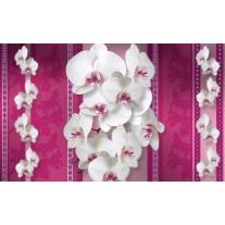 Fotobehang Papier Bloemen, Orchideeën | Roze, Wit | 254x184cm