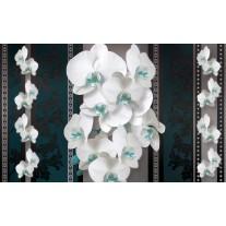 Fotobehang Bloemen, Orchideeën | Turquoise | 152,5x104cm