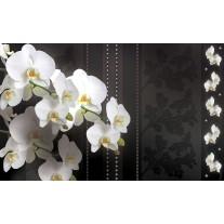 Fotobehang Bloemen, Orchideeën | Wit | 152,5x104cm