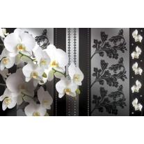 Fotobehang Papier Bloemen, Orchideeën | Grijs | 368x254cm