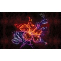 Fotobehang Papier Bloemen | Oranje | 254x184cm