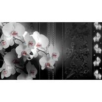 Fotobehang Papier Bloemen, Orchidee | Zwart | 368x254cm