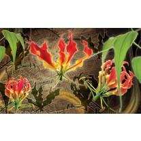 Fotobehang Papier Bloemen | Rood, Groen | 254x184cm