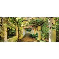 Fotobehang Natuur | Geel, Groen | 250x104cm