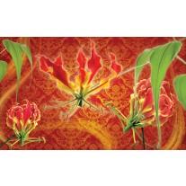 Fotobehang Papier Bloemen | Oranje, Rood | 368x254cm