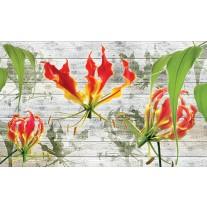 Fotobehang Papier Bloemen | Grijs, Groen | 254x184cm