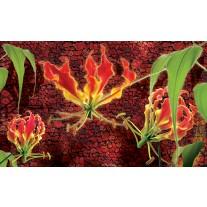 Fotobehang Bloemen | Rood, Groen | 104x70,5cm
