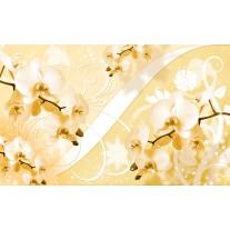 Fotobehang Papier Bloemen, Orchidee | Geel | 254x184cm