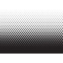 Fotobehang Papier Abstract | Zwart, Wit | 254x184cm