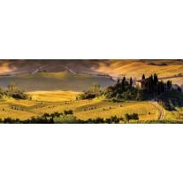 Fotobehang Vlies Natuur | Groen, Geel | GROOT 832x254cm