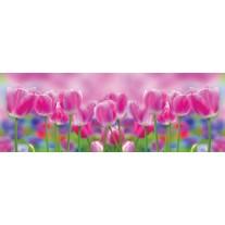 Fotobehang Vlies Tulpen, Bloemen | Roze | GROOT 832x254cm