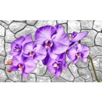 Fotobehang Papier Bloemen, Stenen | Paars | 254x184cm