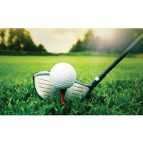 Fotobehang Papier Golf | Groen, Wit | 368x254cm