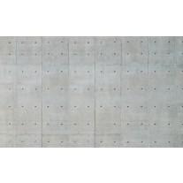 Fotobehang Papier Betonlook | Grijs | 368x254cm