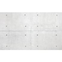 Fotobehang Papier Betonlook | Grijs | 254x184cm