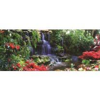 Fotobehang Natuur | Groen, Rood | 250x104cm