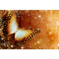 Fotobehang Papier Vlinder | Goud | 368x254cm