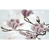 Fotobehang Papier Bloemen, Magnolia | Grijs | 368x254cm