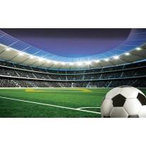 Fotobehang Voetbalstadion | Groen | 152,5x104cm