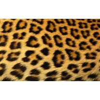 Fotobehang Papier Luipaard | Bruin | 254x184cm
