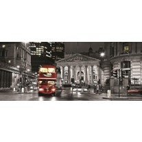 Fotobehang London | Zwart, Grijs | 250x104cm