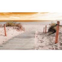 Fotobehang Papier Strand | Geel | 254x184cm