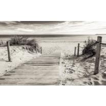 Fotobehang Papier Strand | Grijs | 254x184cm