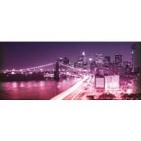 Fotobehang New York | Paars | 250x104cm