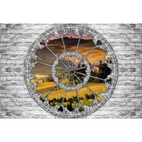 Fotobehang Papier Muur, Natuur | Grijs | 254x184cm