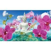 Fotobehang Papier Boeddha, Orchidee | Blauw | 368x254cm