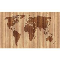 Fotobehang Wereldkaart | Bruin | 152,5x104cm