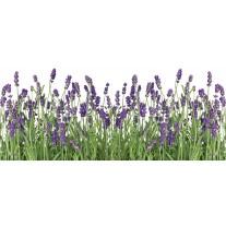 Fotobehang Natuur, Lavendel | Groen | 250x104cm