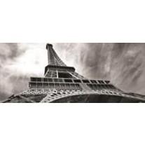 Fotobehang Eiffeltoren, Parijs | Grijs | 250x104cm